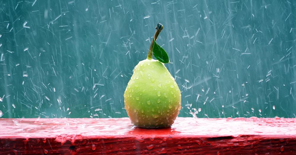 10 Makanan Sehat untuk Musim Hujan