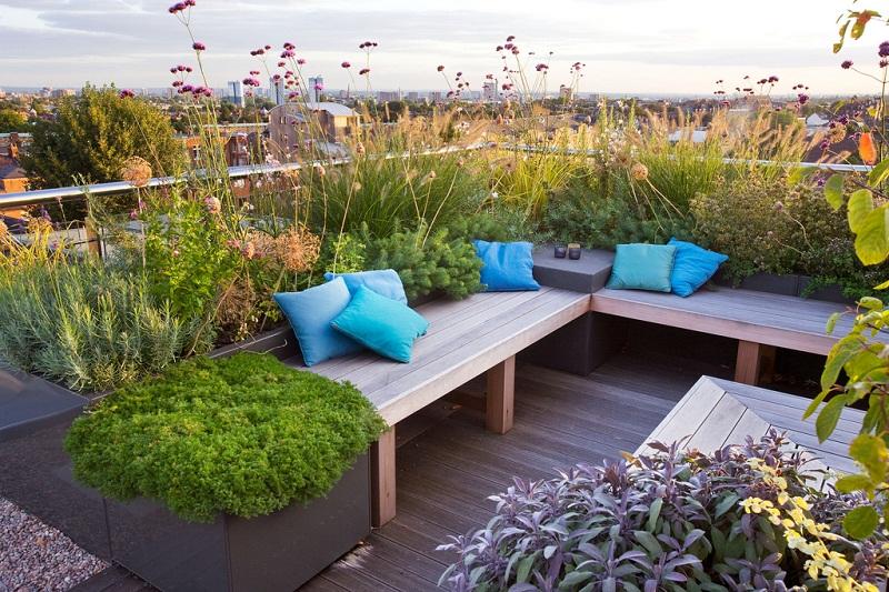 Tips Membuat Roof Garden, Supaya Rumah Terlihat Asri