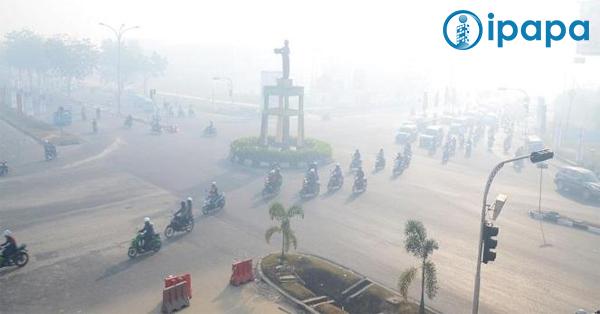 Jarak pandang hanya 40 meter, kabut asap di Pekanbaru semakin pekat
